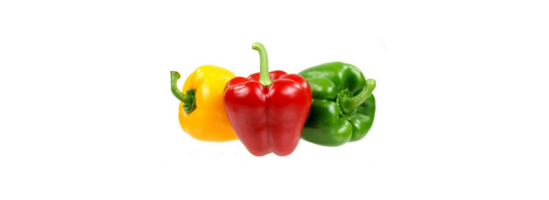 (Baby Capsicum mix (Red, Yellow, Green