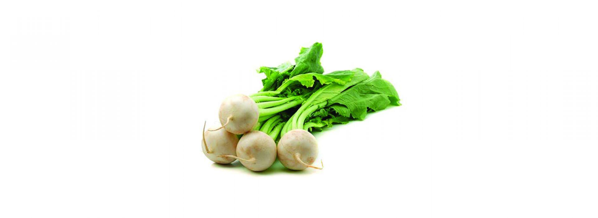 Baby Turnip