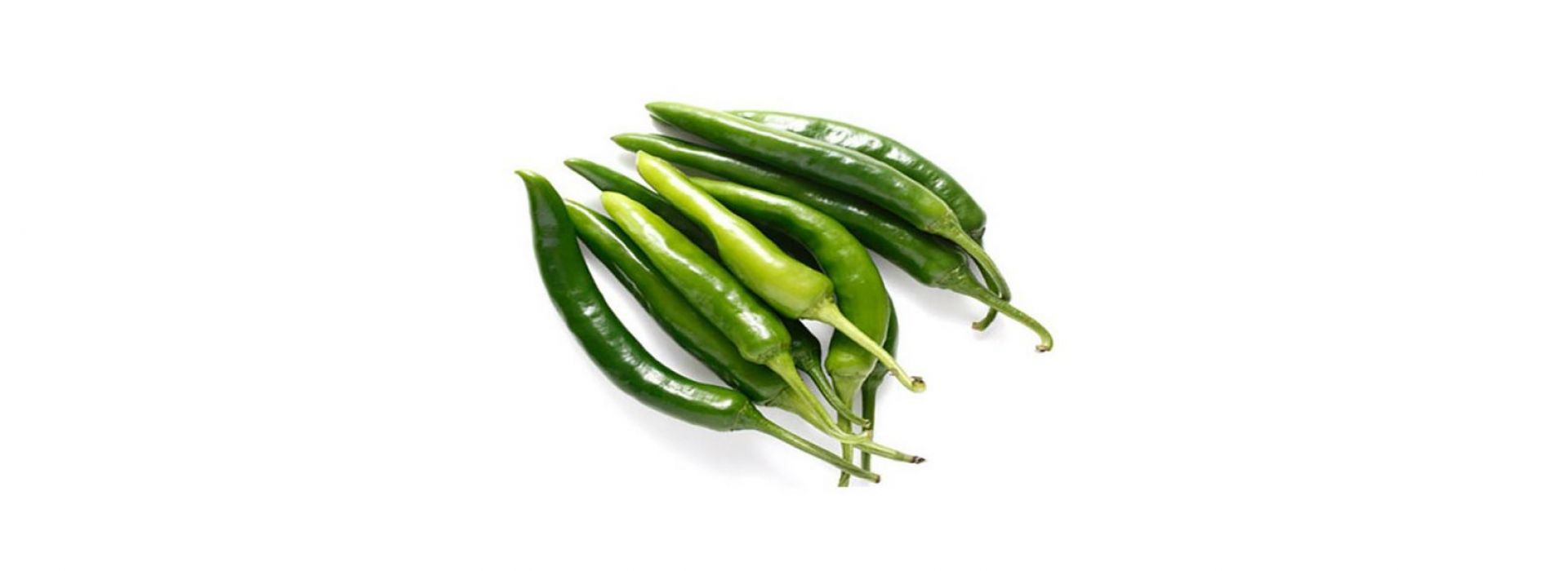 Bird Green  Chili