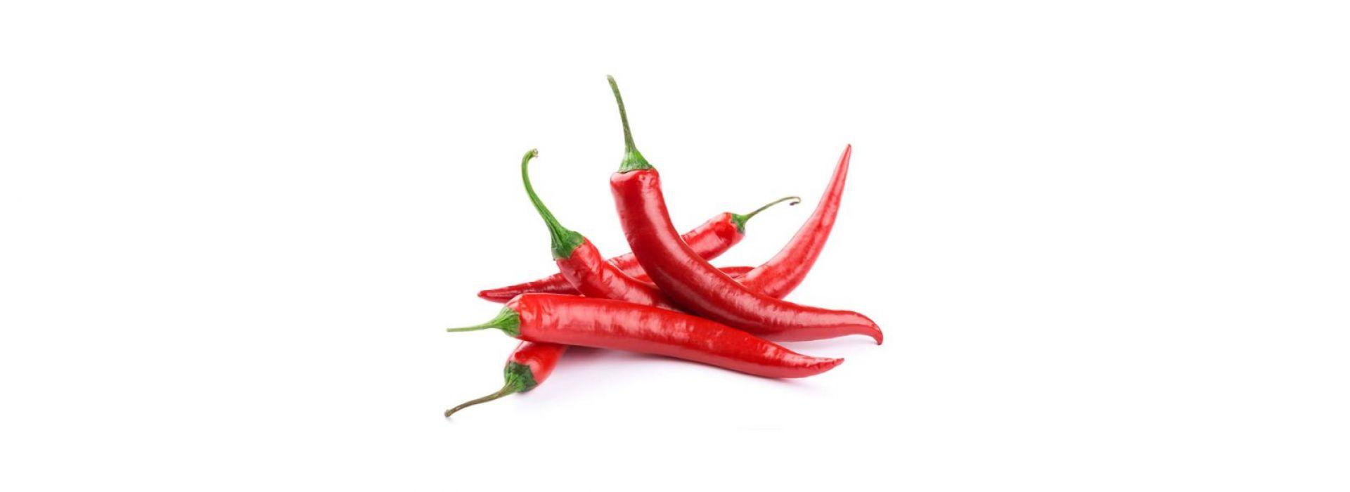 Bird Red Chili