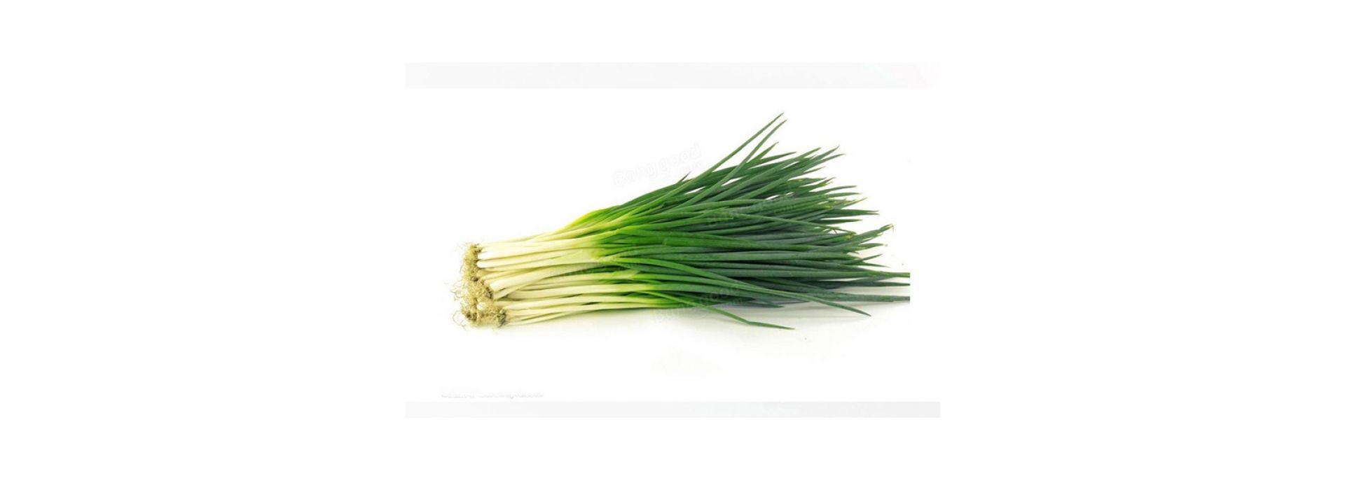 Herb Chinese Garlic