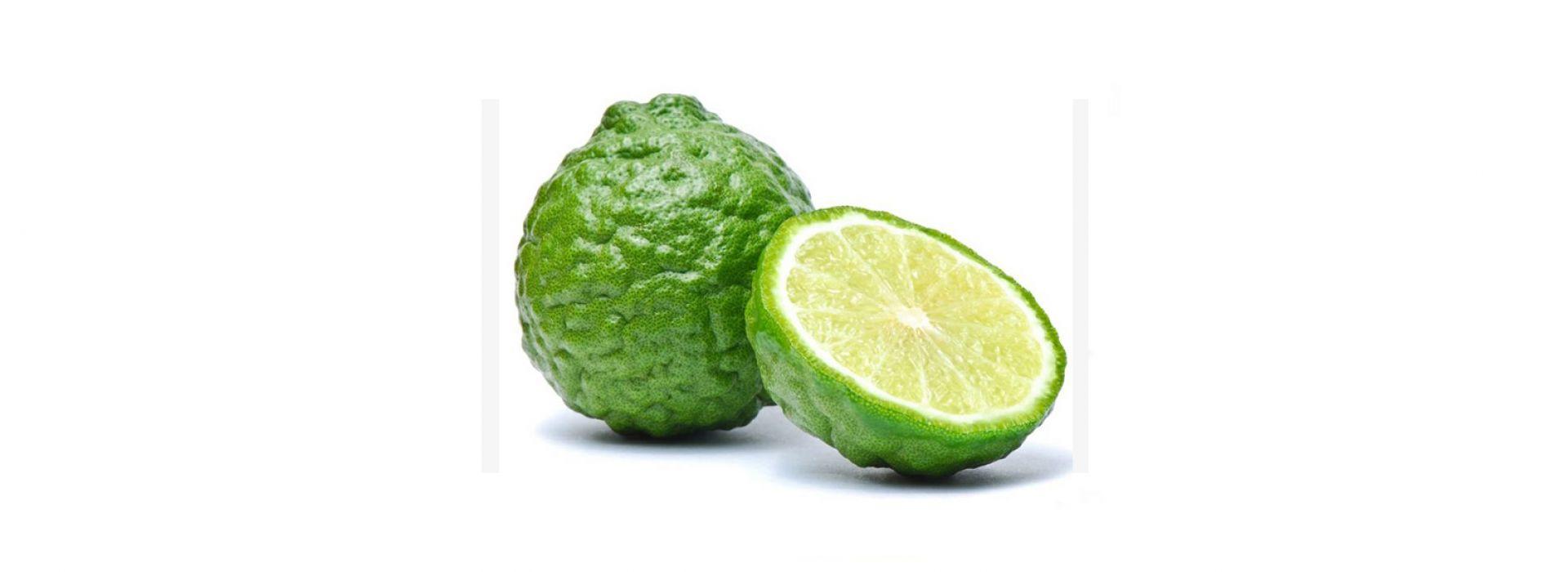 Kaffir Lime Fruit
