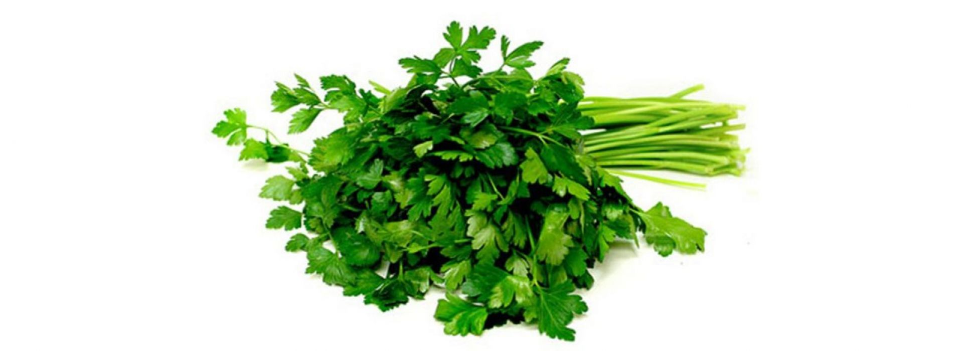 Parsley Thai
