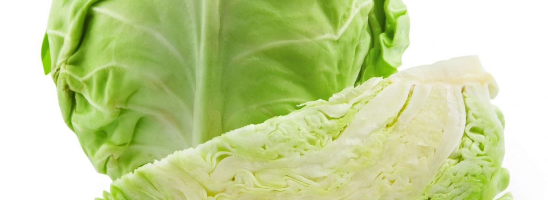 Salad Cabbage