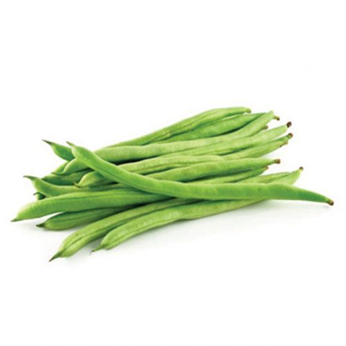 Beans Haricot