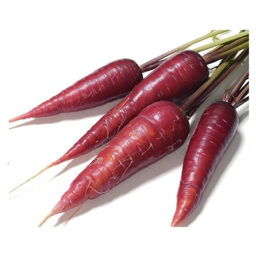 Carrots Purple