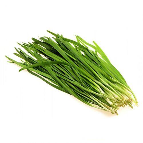 Chinese chive Leaf