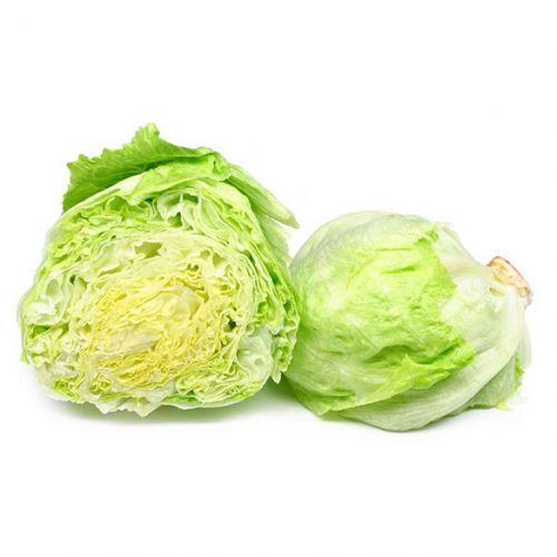 Ice Berg Lettuce