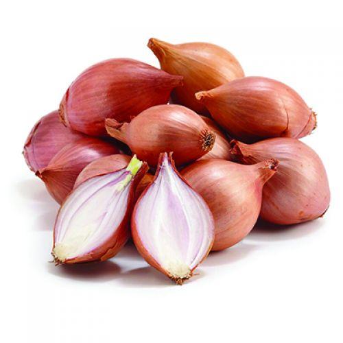 Onion Shallots