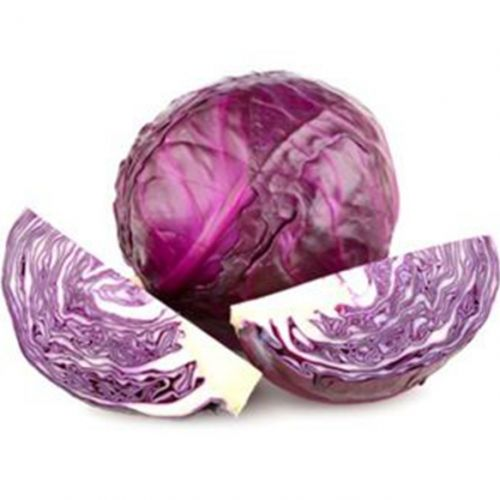 Sprout Red Cabbage