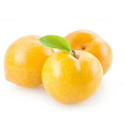 Local Apricot